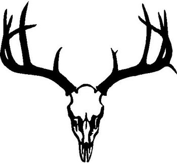 deer%20skull%20decal