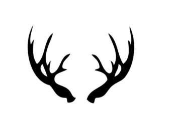 Deer Skull Decal Drop Tine on deer head decal