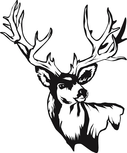 White Tail Deer Sckull Drawn: Clipart Panda - Free Clipart Images
