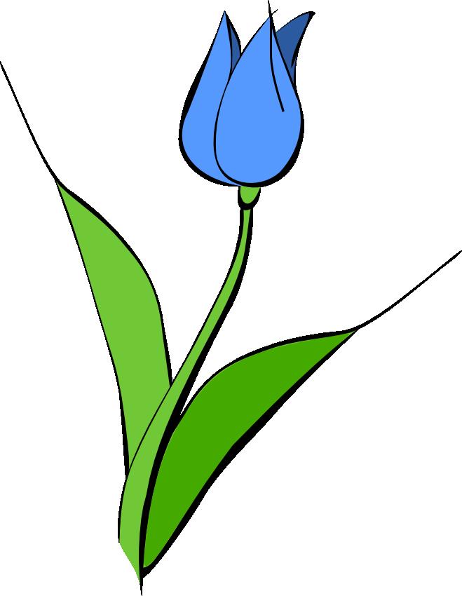 blue tulip clip art clipart panda free clipart images rh clipartpanda com tulip clip art pictures tulip clip art pictures