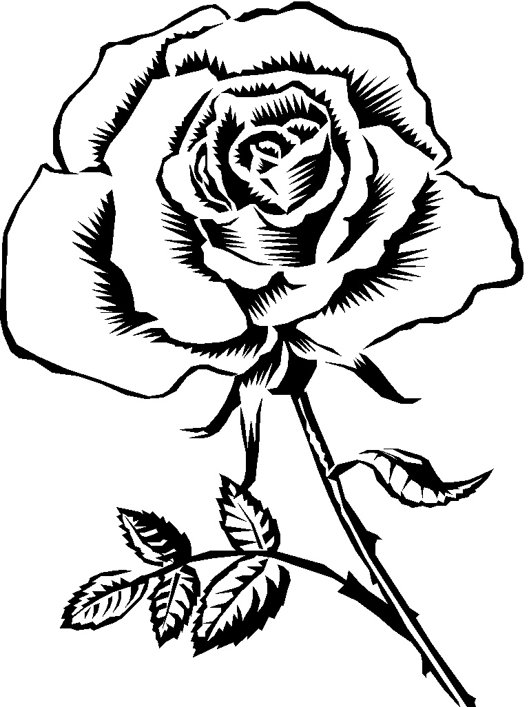 rose art coloring pages - photo#3