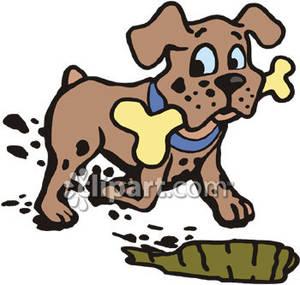 Dog Eating Sticks