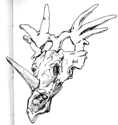 dinosaur fossils drawing of clipart panda free clipart images rh clipartpanda com