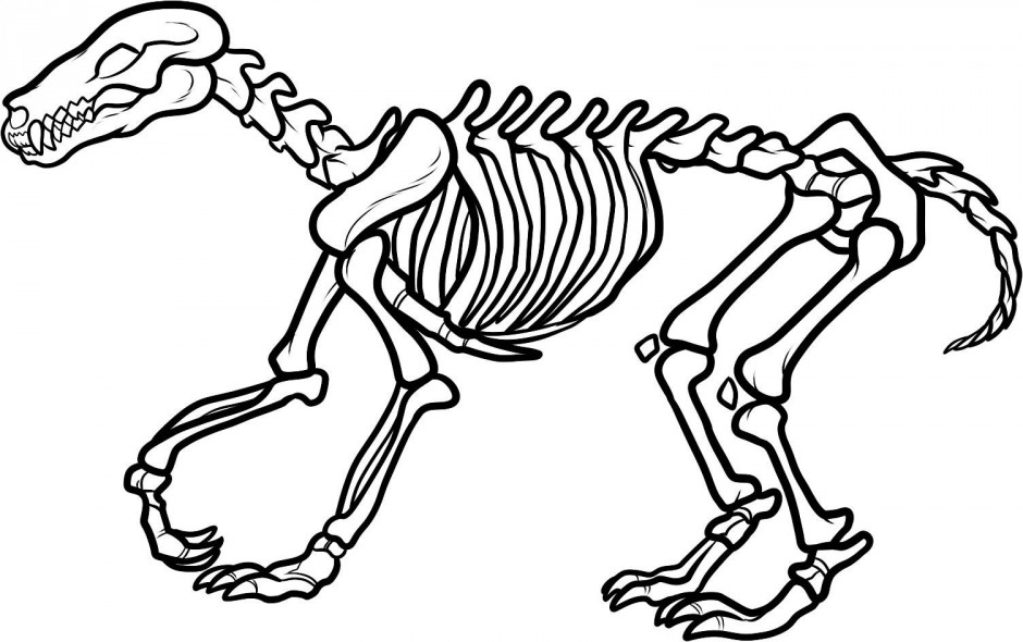Dinosaur Skeleton Coloring Page