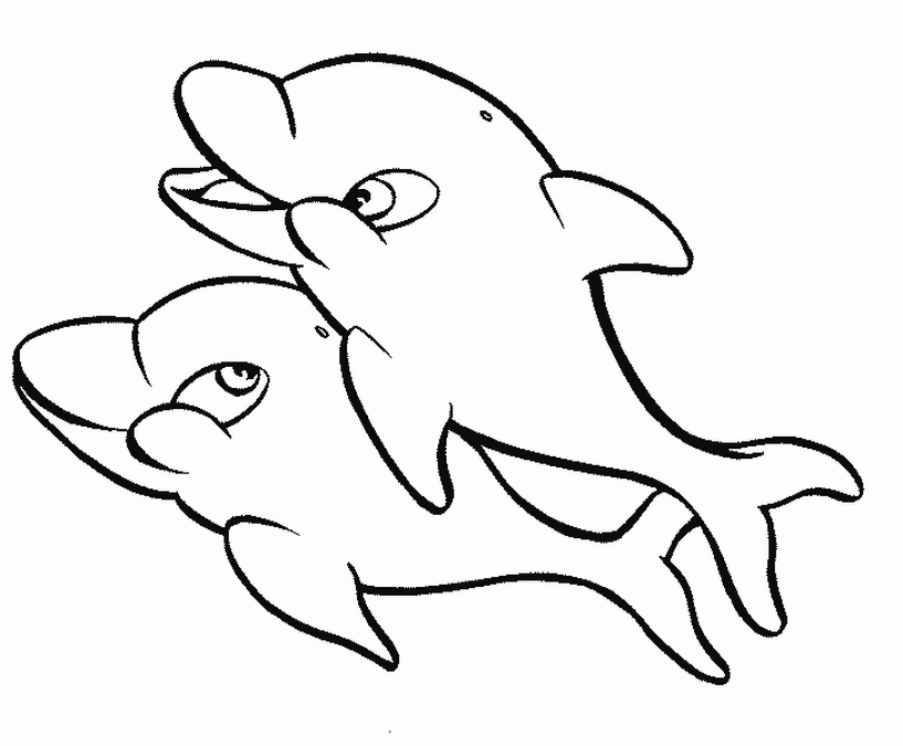 Dolphin Coloring Pages Clipart Panda Free Clipart Images