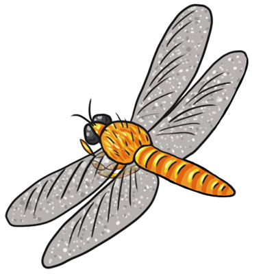 dragonfly clipart black and white clipart panda free clipart images rh clipartpanda com dragonfly clip art pictures dragonfly clip art pictures