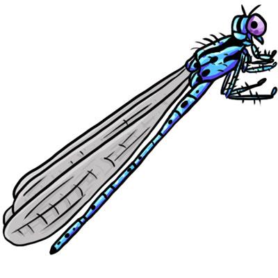 dragonfly-clip-art-15-free-dragonfly-clip-art-l.jpg