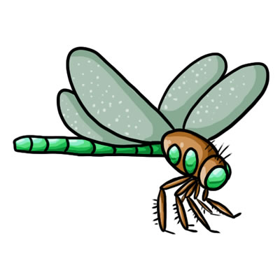 dragonfly clipart free download clipart panda free clipart images rh clipartpanda com dragonfly clipart black and white free dragonfly clipart free