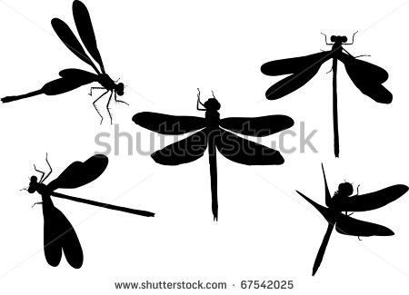 dragonfly silhouette clipart panda free clipart images