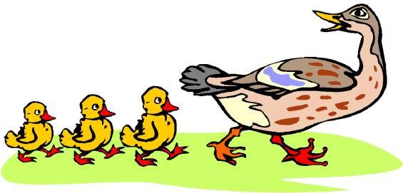 ducks clip art clipart panda free clipart images rh clipartpanda com