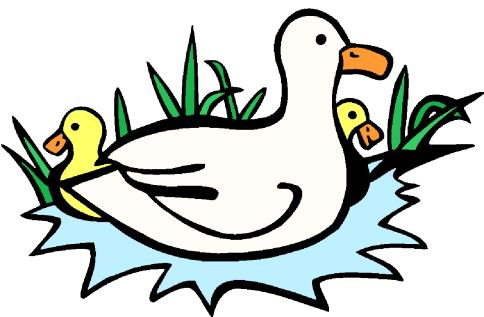 Duck And Ducklings Clipart   Clipart Panda - Free Clipart Images
