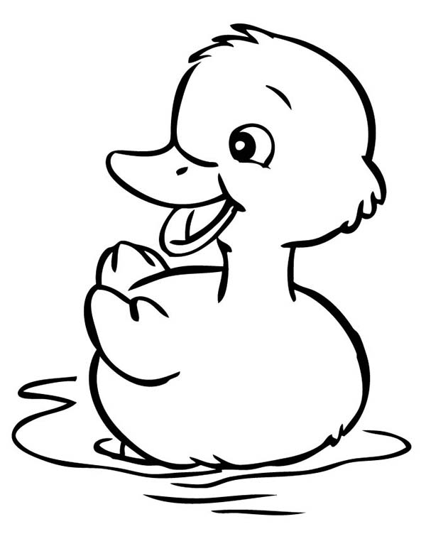 Free Coloring Pages Of Duckling Coloring Pages Of Ducks