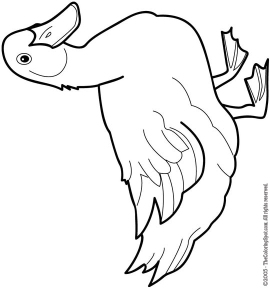 Mama Duck Coloring Page Duckling Pages