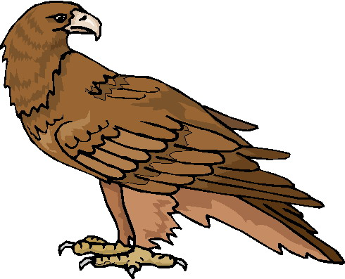 Eagle Clip Art With Raised Wings Clipart Panda Free