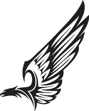 Eagle Wings Png Eagle wings  Eagle Wings Logo Png