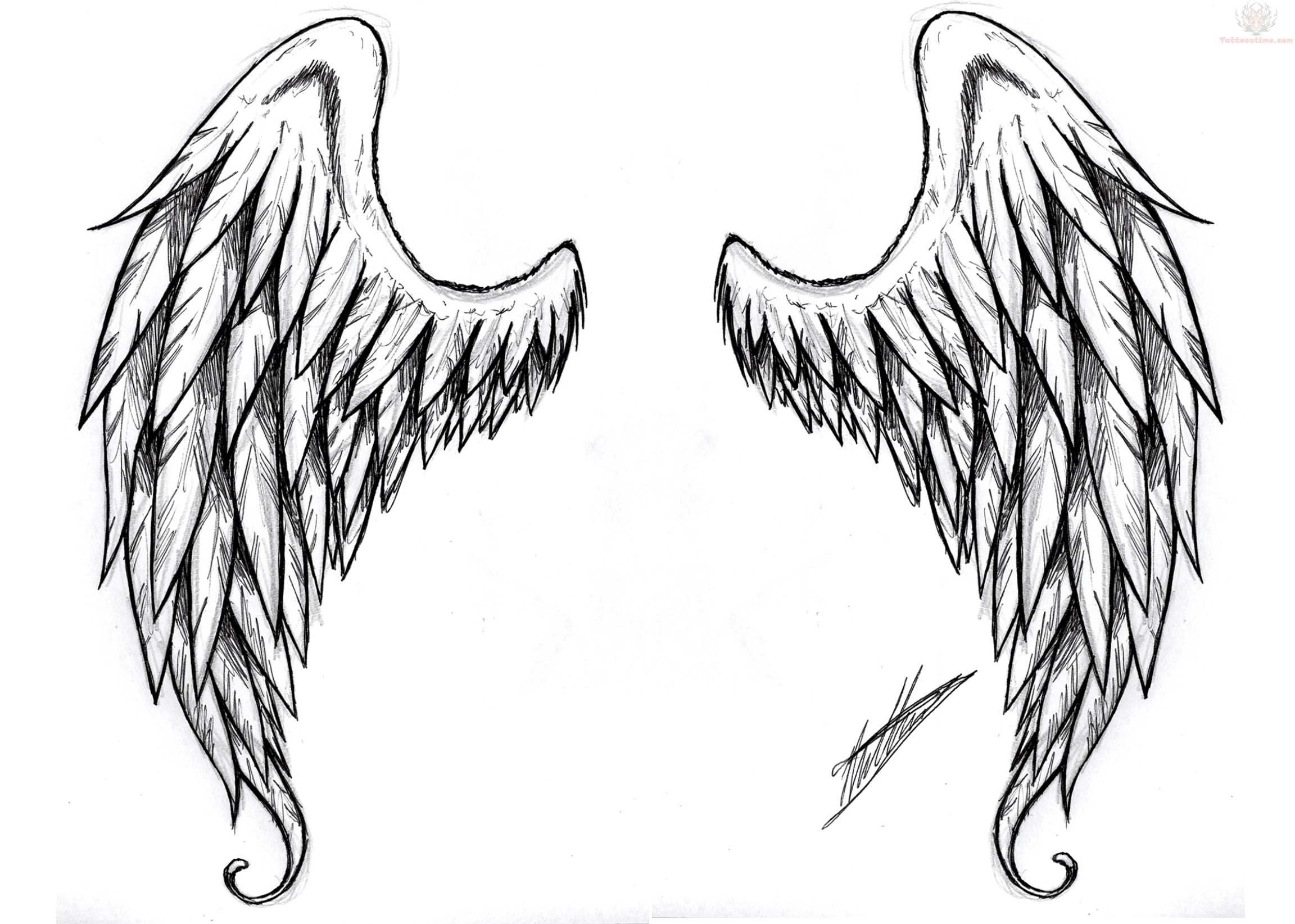 Demon Wings Tattoos Design | Clipart Panda - Free Clipart ...