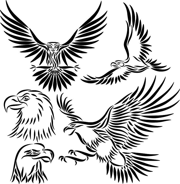 eagle wings design clipart panda free clipart images. Black Bedroom Furniture Sets. Home Design Ideas
