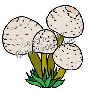 clip art mushrooms color clipart panda free clipart images rh clipartpanda com aquatic ecosystem clipart ecosystem clipart png