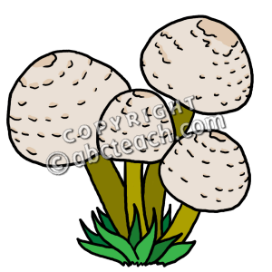 clip art mushrooms color clipart panda free clipart images rh clipartpanda com desert ecosystem clipart forest ecosystem clipart