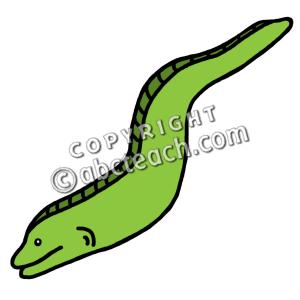 Eel Clip Art
