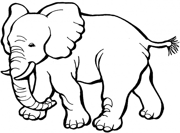Henna Elephant Coloring Pages Elephant-coloring-pages