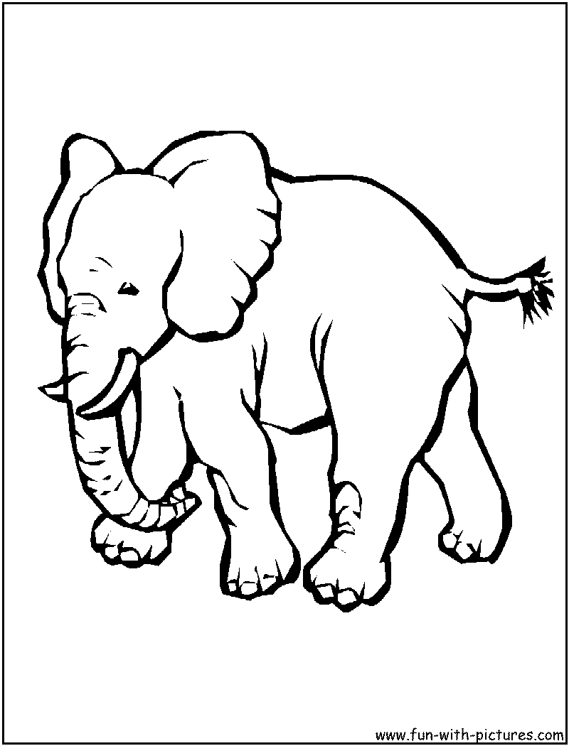 Coloring pictures elephant - Elephant 20coloring 20pages