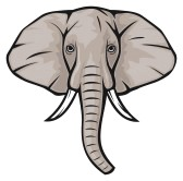 Elephant Clip Art Face