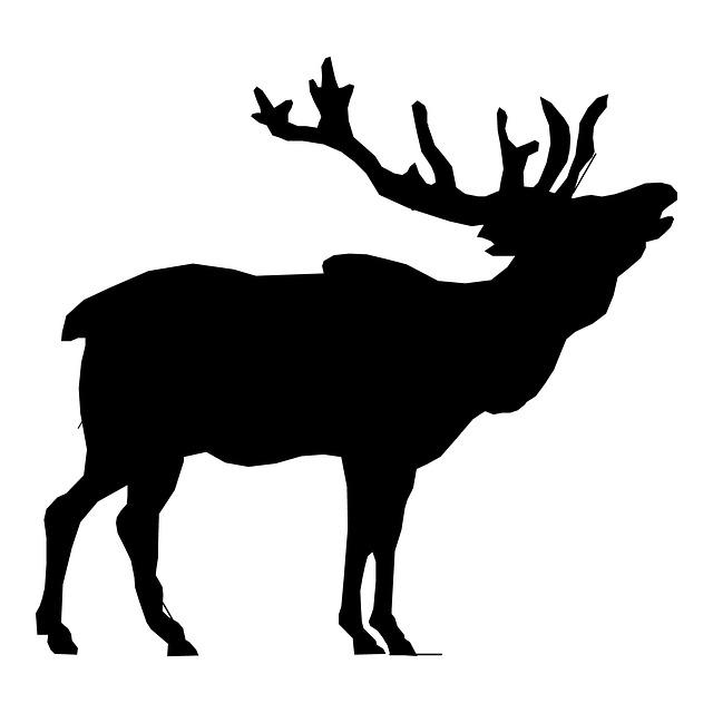 cow elk clipart - photo #38