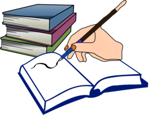 book reports and essays