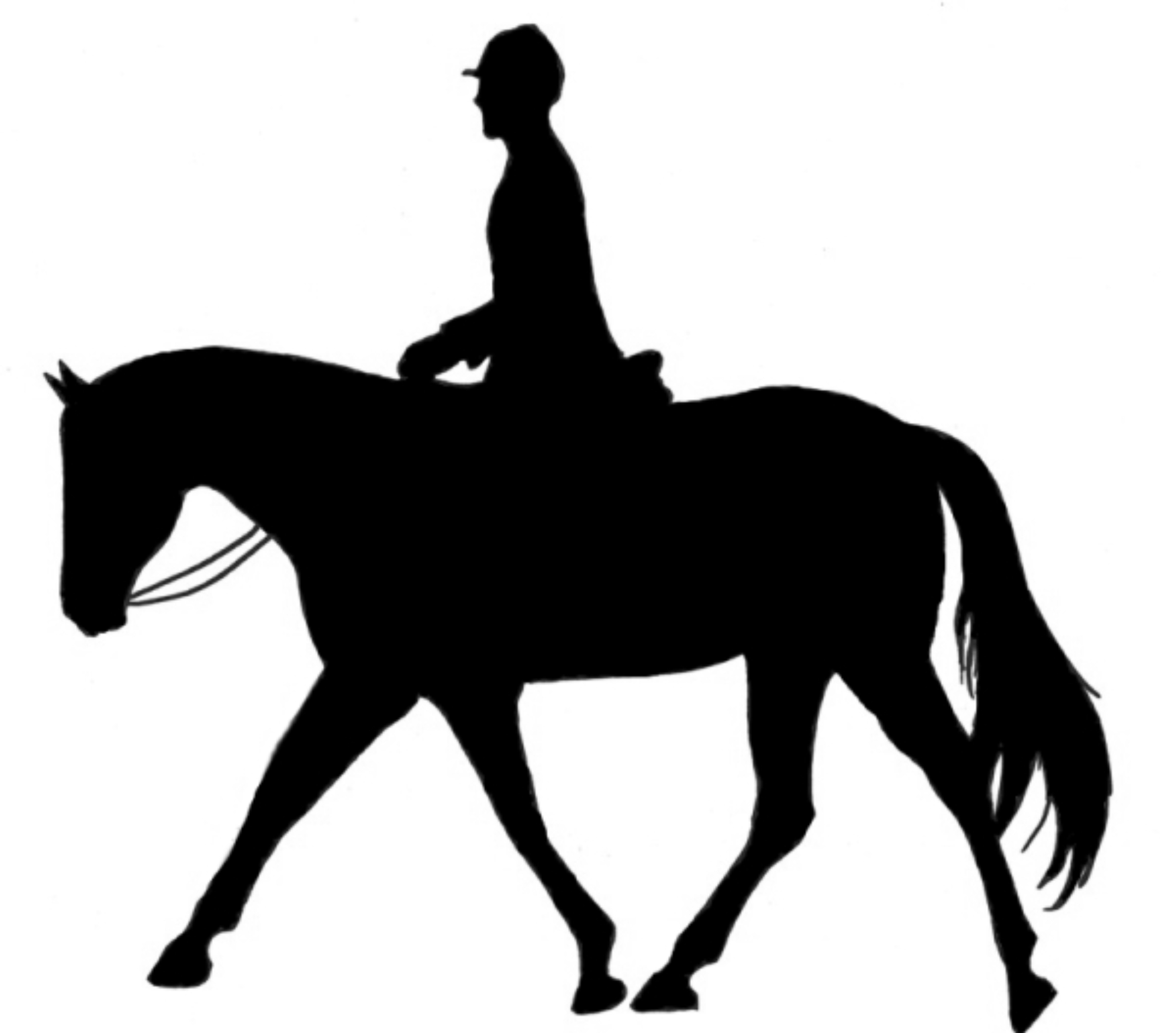 English Horse Riding Clipart | Clipart Panda - Free ...