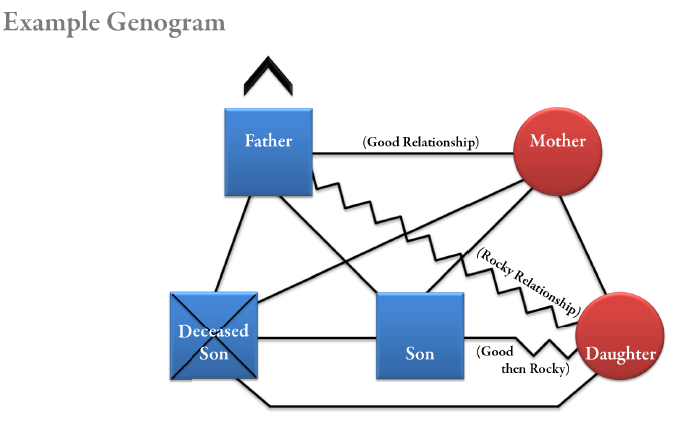 genogram essays Write a paper describing the structure and culture of your family-of-origin from a bowenian perspective the paper should:  illustrate how the bowenian approach applies to your family.