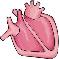 Free Heart Failure Clipart Failure 20clipar...