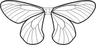 graphic relating to Free Printable Fairy Wings known as Check out Printable Wing Models Clipart Panda - No cost Clipart