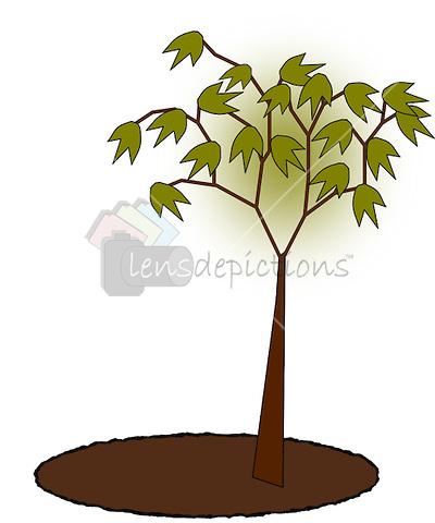 fall leaf clipart no background clipart panda free clipart images rh clipartpanda com fall tree images clip art
