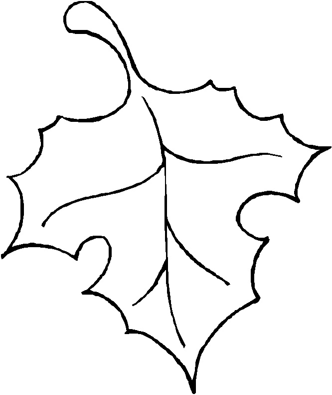 Fall Leaf Clipart Outline | Clipart Panda - Free Clipart ...