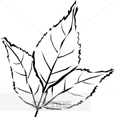 Fall Leaves Clipart Black And White | Clipart Panda - Free ...