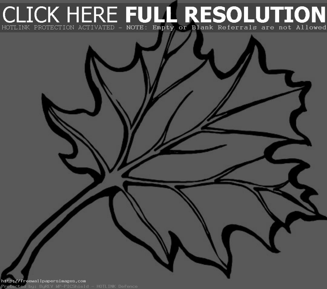 100 autumn leaf coloring pages autumn leaves coloring pages for