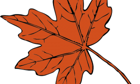 fall%20leaves%20tree%20clipart