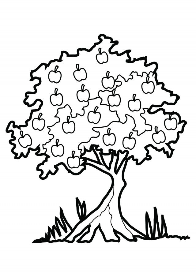 Fall Trees Coloring Pages   Clipart Panda - Free Clipart Images