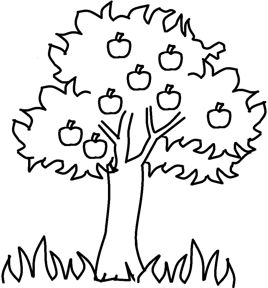 Simple Large Tree Root Coloring Coloring Pages