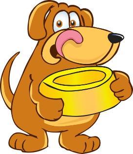 Dog Baby Food Bowl