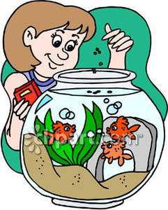 Feeding 20clipart clipart panda free clipart images for How to feed fish