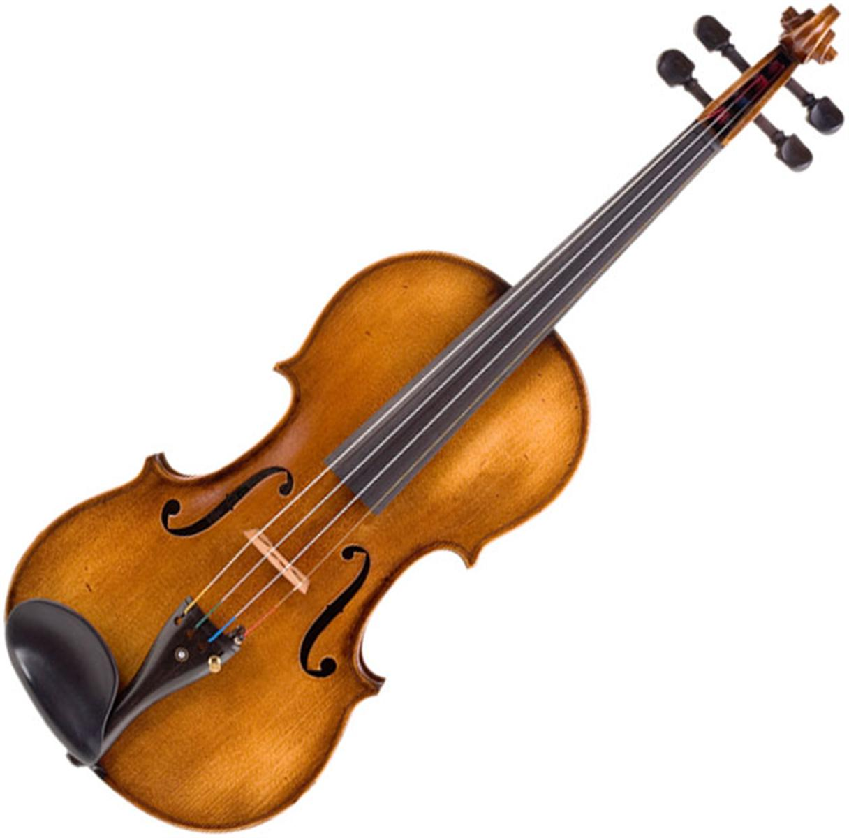 Opinions on fiddle Vibeline
