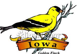 Finch Clip Art