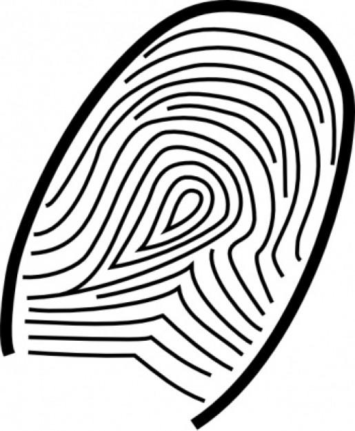 Eadd5 72abe92 further Volk Kak Risovat Shema in addition Fingerprint 20clipart besides 68185 likewise A3 98 35 01000000000000119093580224298. on 35