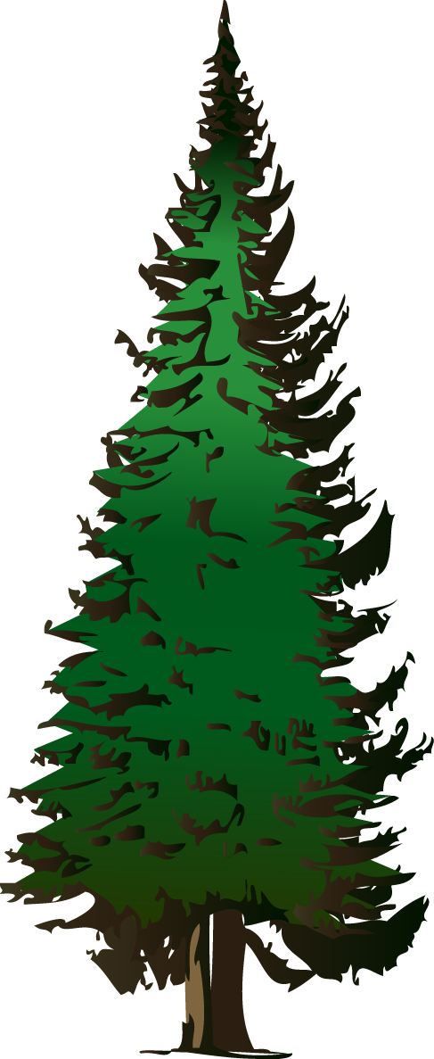 Draw Christmas Trees