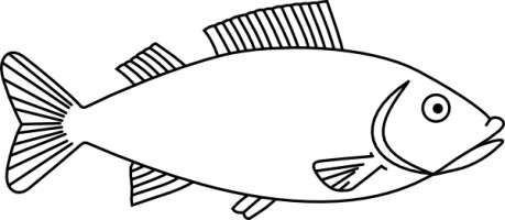 fish clip art printable free clipart panda free clipart images rh clipartpanda com clip art of fishing blue fish clipart