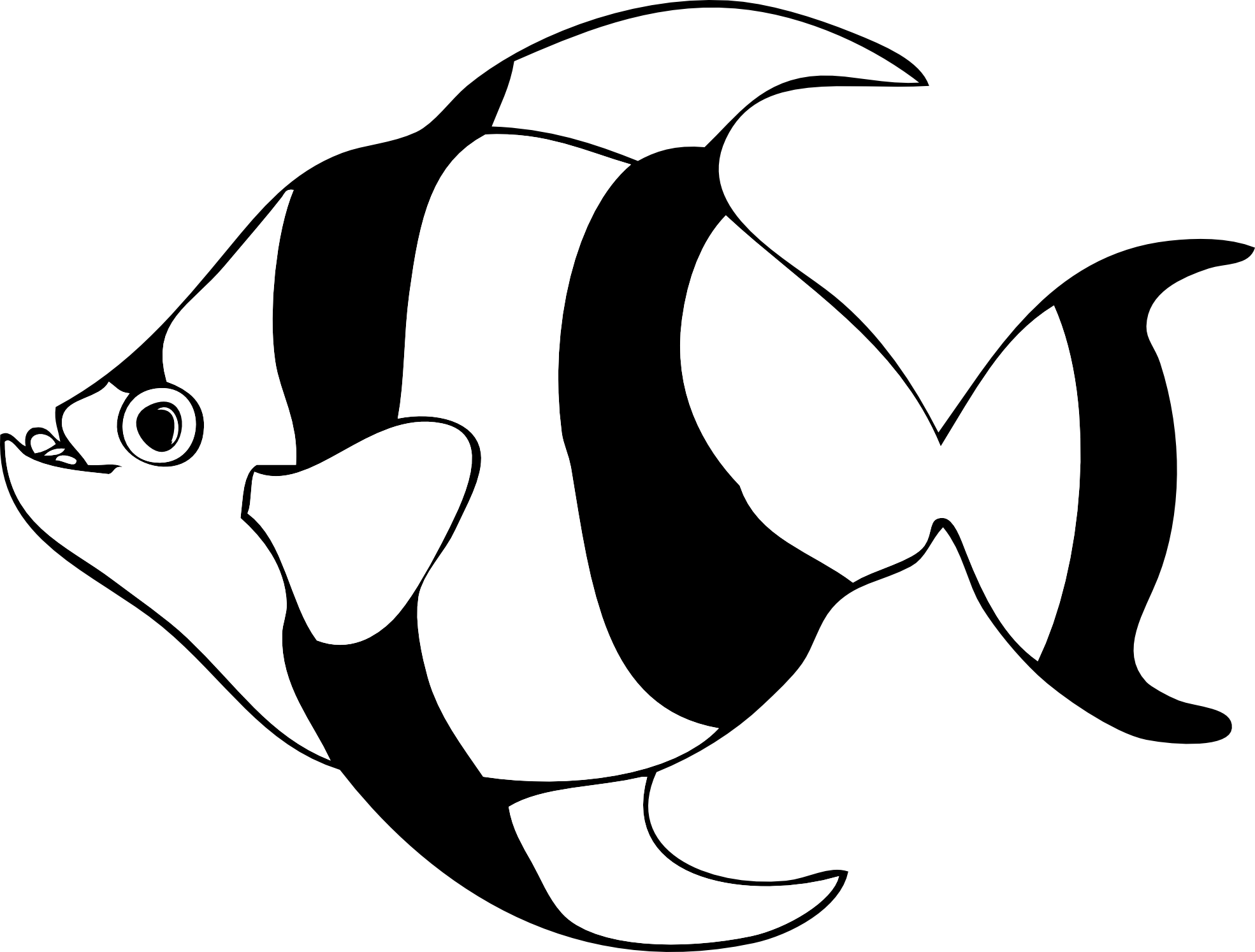 Fish outline clipart black and white clipart panda for Fish clipart images