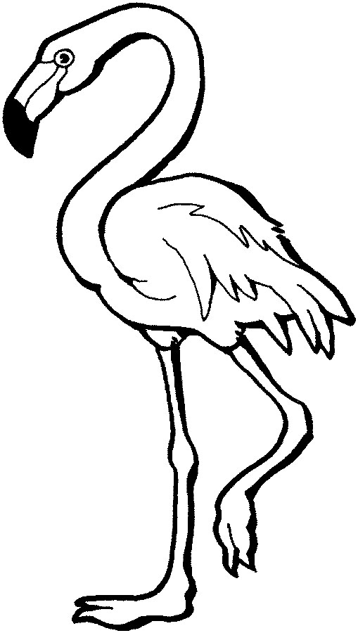 Flamingo Clip Art Black And White | Clipart Panda - Free ... Flamingo Outline