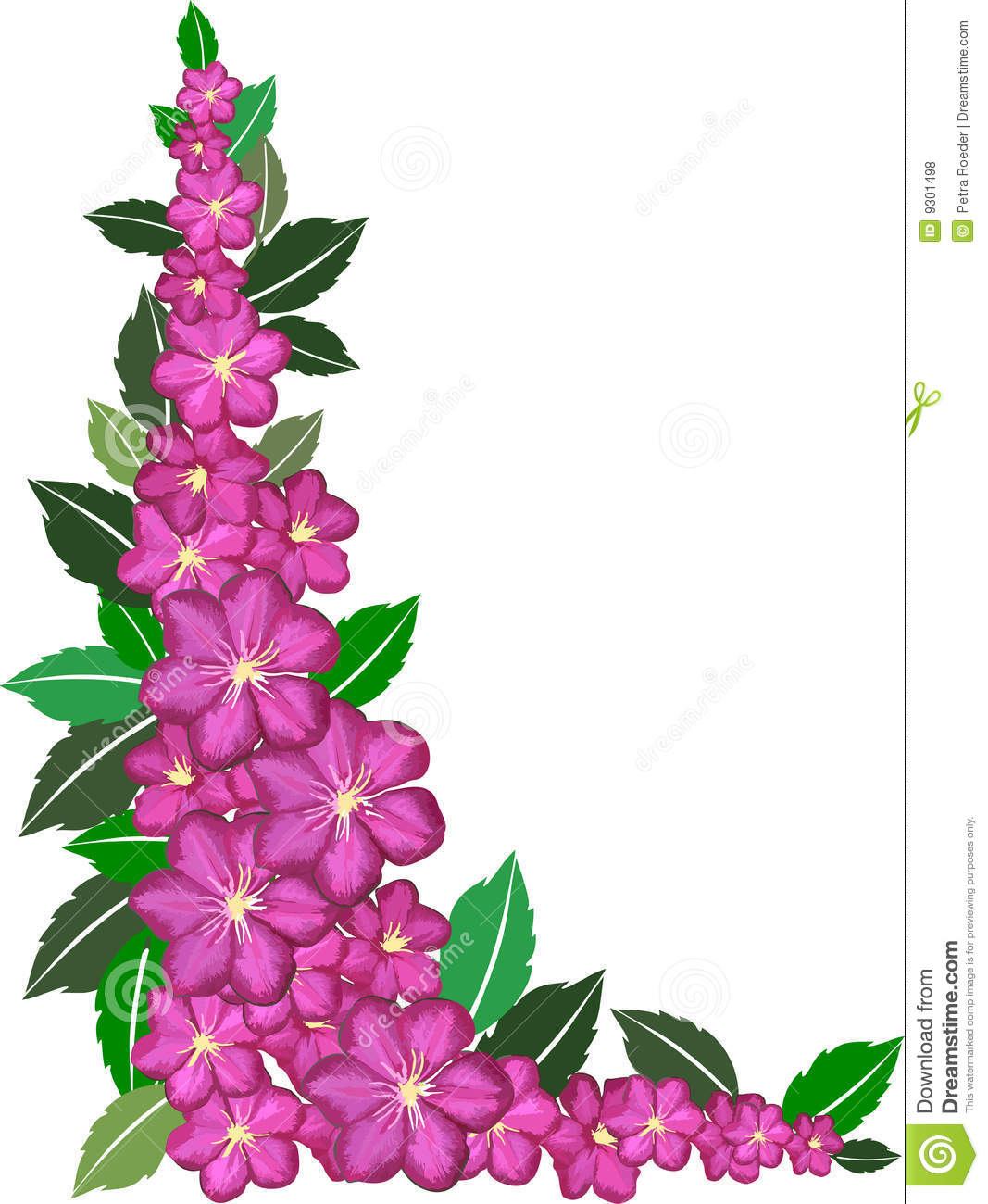 Pink And Purple Flower Border Images Pictures Becuo